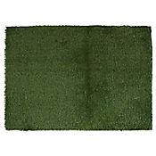 Alfombra Gramma Sintética 50x70 cm Verde