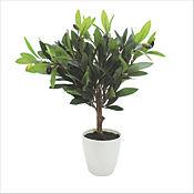 Planta Artificial Olivo 45 cm