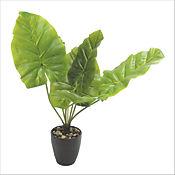 Planta Artificial Singonio 51 cm