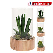 Terrario Artificial  Cristal C/Planta 3Ass