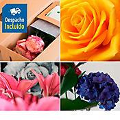 Suscripción Flores de Exportación Plan Armonía 3 Entregas Durante Un Mes y Medio
