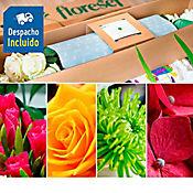 Suscripción Flores de Exportación Plan Mágico 4 Entregas Durante 2 Meses