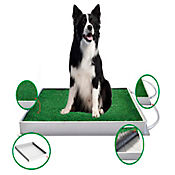 Potty Pet Bandeja para Perros Grande 77 x 52,3 x 6,5 cm Negro