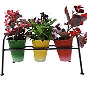 Soporte Cactus 3 Materas Color Negro Hecho de Hierro