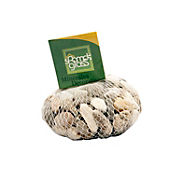 Piedra fósil mixta x 1000 gramos