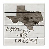 Cuadro en Lienzo Born & Raised Texas Placa 25x38