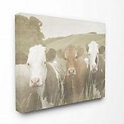 Cuadro en Lienzo Vacas en el Campo 41x51