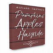 Cuadro en Lienzo Pumpkin Apples 41x51