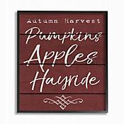 Cuadro en Lienzo Pumpkin Apples Enmarcado 28x36