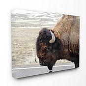 Cuadro en Lienzo de Buffalo 61x76