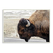 Cuadro Decorativo de Buffalo Placa 32x47