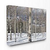 Cuadro en Lienzo Fotografia en Invierno 61x76