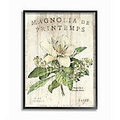 Cuadro en Lienzo Enmarcado Magnolias Francesas 41x51