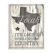Cuadro Decorativo Texas Whole Other Country Placa 25x38