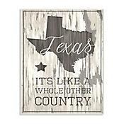 Cuadro Decorativo Texas Whole Other Country Placa 32x47