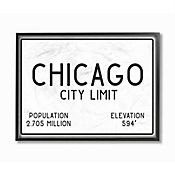 Cuadro en Lienzo Enmarcado Chicago City Limit 28x36