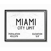 Cuadro en Lienzo Enmarcado Miami City Limit 28x36