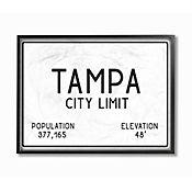Cuadro en Lienzo Enmarcado Tampa City Limit 41x51