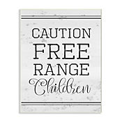 Cuadro Decorativo Caution Free Range Placa 32x47