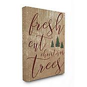 Cuadro en Lienzo Fresh Cut Christmas Tree 61x76