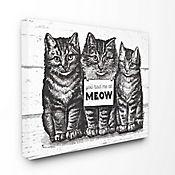 Cuadro en Lienzo You Had Me At Meow 41x51
