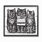 Cuadro en Lienzo Enmarcado You Had Me At Meow 41x51