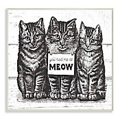 Cuadro Decorativo You Had Me At Meow Placa 25x38