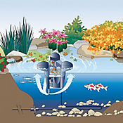Eliminador de Desechos de Fuente Swimskim
