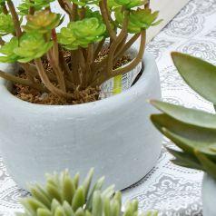 Flores Y Plantas Artificiales Homecenter