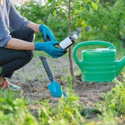 Herbicidas y Fungicidas
