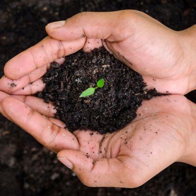 Tierras, Abonos y Fertilizantes