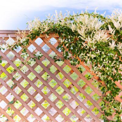 Mallas, Rejas y Cercas para Jardin