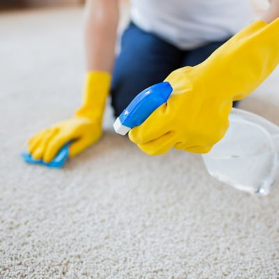 Limpiadores para Alfombras, Muebles, Metales