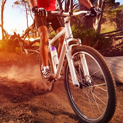 Bicicletas Todo Terreno y de Montaña